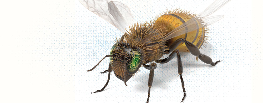 Robots Modeled on Bees Sense Rather than Think
