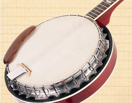 The Banjo The Engineers Instrument