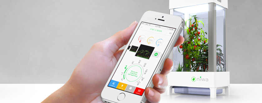 A Green Thumb from a Smart Phone