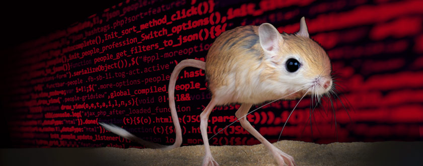 Rodents Help Robotics Leap Forward