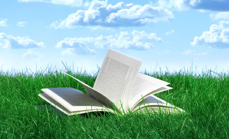 Book Open on the Grass