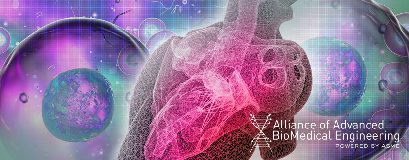 From AABME: Researchers Grow Human Heart Muscle