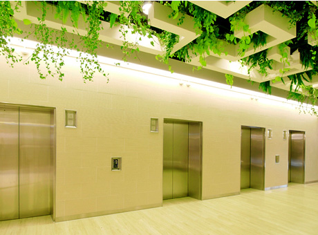 What Makes an Elevator Green?