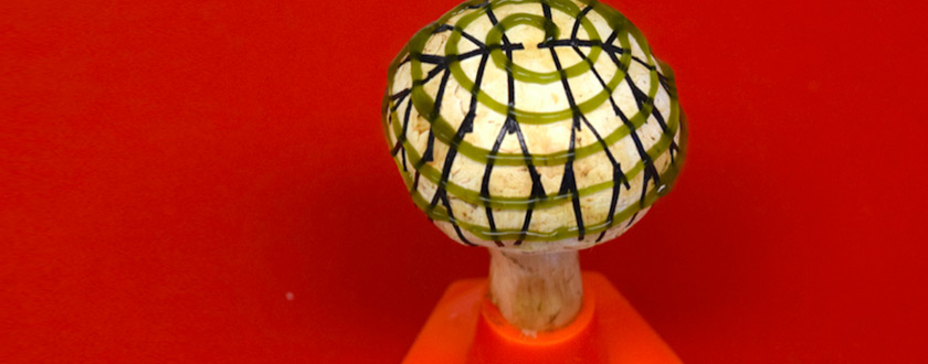 The Bionic Mushroom