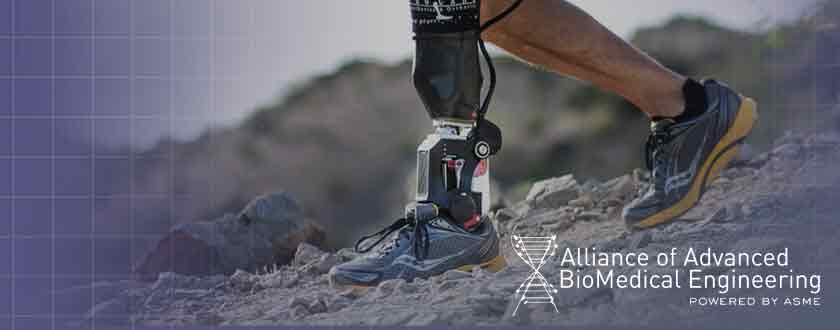From AABME: A More Natural Approach to Passive Ankle Prostheses