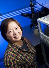 Xin Zhang, PhD