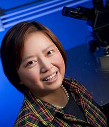 Xin Zhang, Ph.D